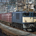 Photos: EF64 1019+コキ