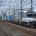 Photos: EF65 2096+コキ