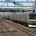 湘南新宿ラインE231系1000番台 U511+U-115編成