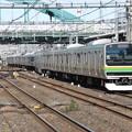 湘南新宿ラインE231系1000番台 K-09+U223編成
