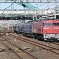 EF81 81+12系【懐かしの急行列車】