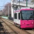 Photos: 都電荒川線8800形 8803号車