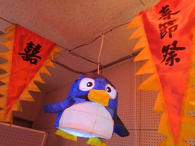 20170205 長崎ペンギン水族館 08