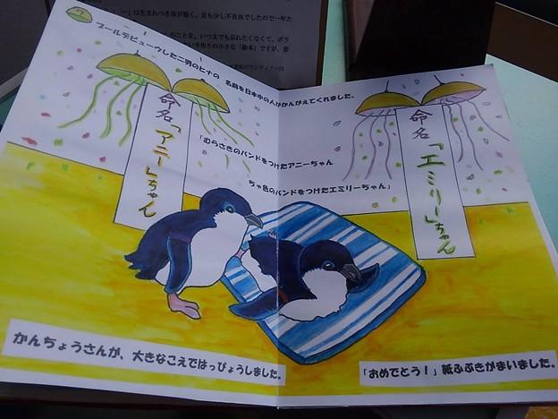 20170314 長崎ペンギン水族館 20