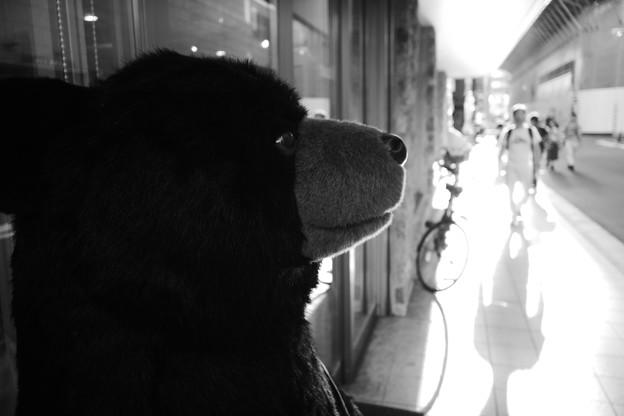 待ち合わせをする熊