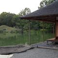 名勝 養浩館庭園 5