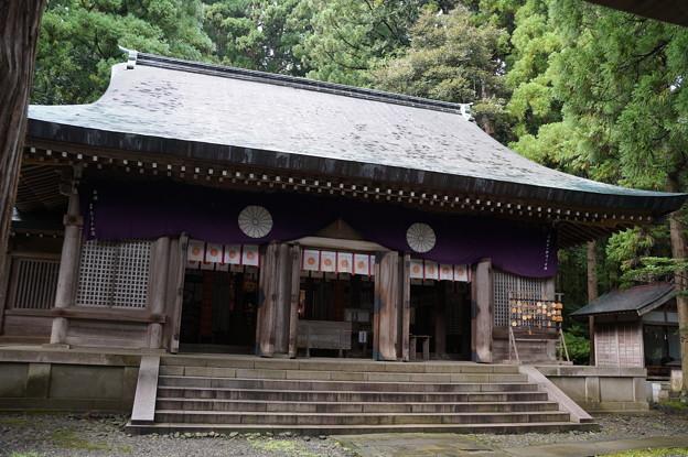 渡津神社 2