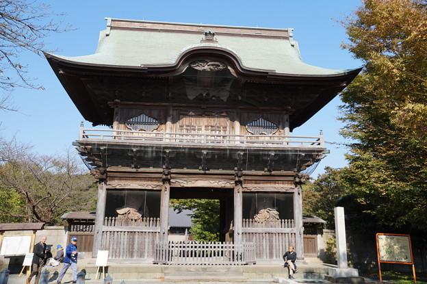 金沢 称名寺 5