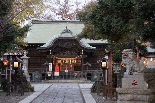 津田沼 菊田神社 2