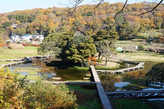 厳島湿生公園 4