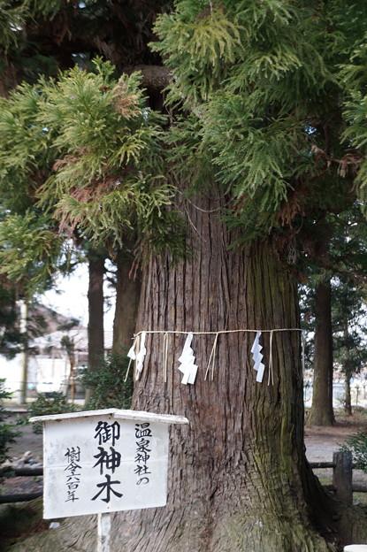 小川 温泉神社