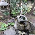 Photos: 有斐斎弘道館・内露地2
