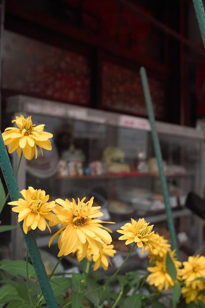 中華屋の花