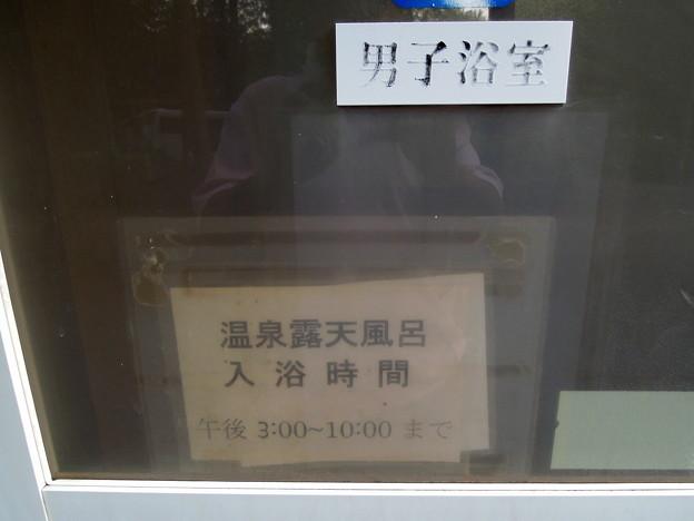 Photos: 河津オートキャンプ場028