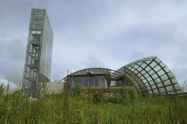 写真: fukushima060908017