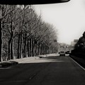 写真: つくばへの道--2  12-24