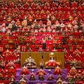 Photos: 第4回770のひな人形展
