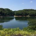 Photos: 諸橋ダム