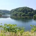 Photos: 寺田川ダム
