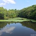 Photos: 東谷内ため池