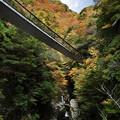 Photos: 滝と橋