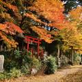 Photos: 原神社