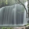 写真: 鍋ヶ滝水のスクリーン