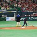 Photos: 20150531b vs スワローズ_065_つば九郎