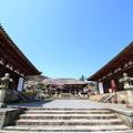 写真: 當麻寺・本堂