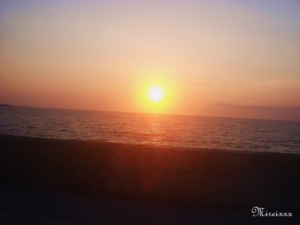 春の沖縄本島2010@名護付近