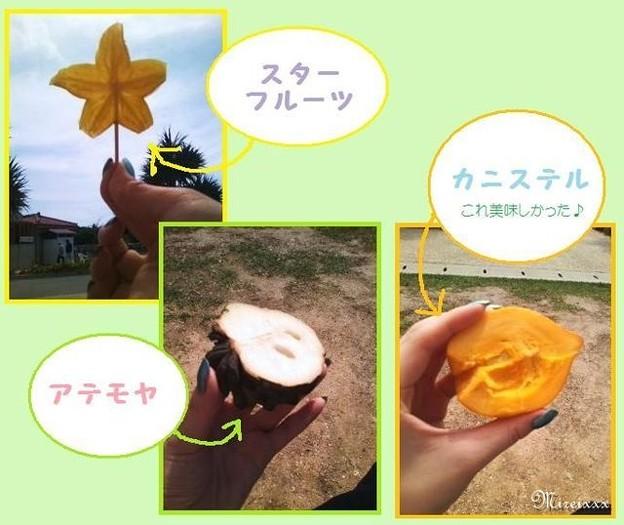 春の沖縄本島2010@おやつ