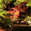Photos: 宝満宮竈門神社 紅葉ライトアップ