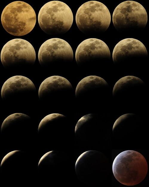 2015.4.4皆既月食