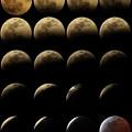 写真: 2015.4.4皆既月食