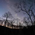 写真: ミズバショウの森に銀河昇る