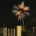 Photos: '10高崎祭り1