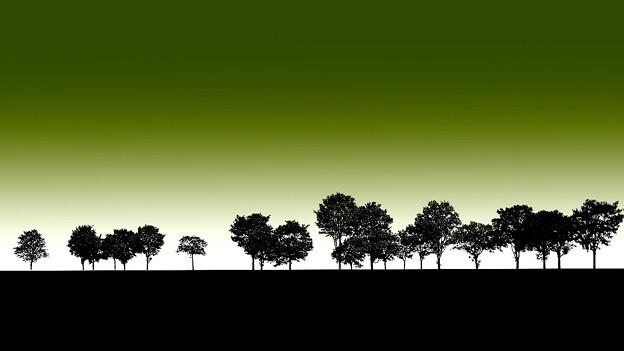 樹木のある風景
