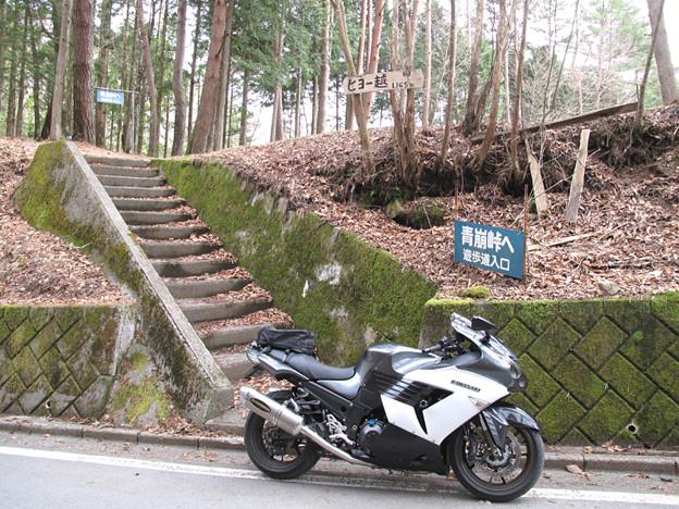 写真: IMG_9230 ヒョー越