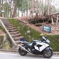 Photos: IMG_9230 ヒョー越