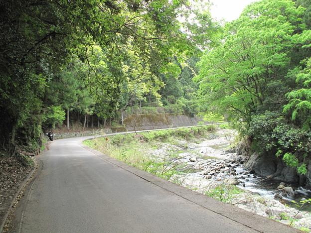 写真: IMG_9357 気持ちよい高見川沿い