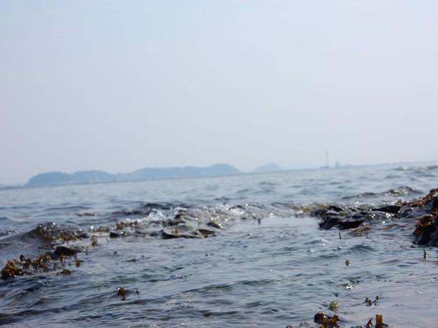 写真: DSCN1412 春海