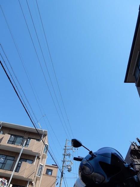 写真: DSCN1694 良い天気
