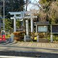 Photos: 20170127氷川神社(新座市)