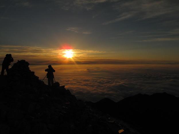 写真: 朝陽を浴びて