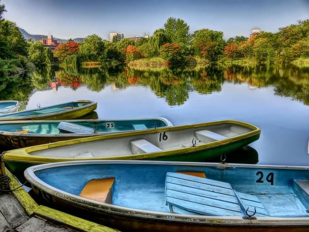 Photos: ボート乗り場の秋