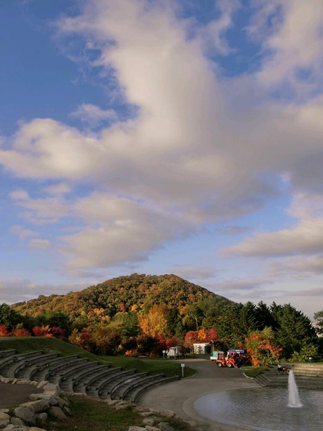写真: 旭山から円山の紅葉を見て