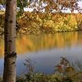 紅葉の西岡水源地