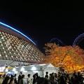 Photos: Liveの余韻とライトアップ