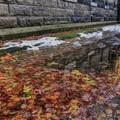 秋の記憶の中で~今はまだ雪に閉ざされて