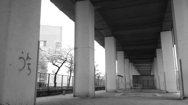 高架下の小さな公園